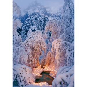 Weihnachtskarte Natur Verlag, Winter 122x175 mm, 5 Motive, Pk. à 5 Stk.