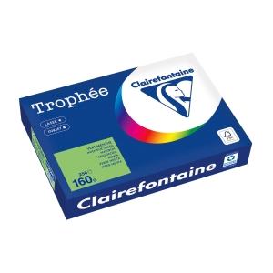 Kopierpapier Trophee 1025 A4, 160 g/m2, maigrün, Packung à 250 Blatt