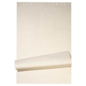 Flipchart-Block 67x95 cm, 20 Blatt blanko/kariert, Recycling