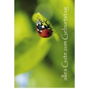 Doppelkarte Art Bula, Geburtstag, 175x122 mm, deutsch