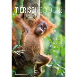 Bildkalender Tierisch Cool 18.0223