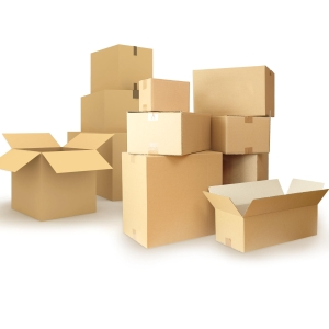 Pack de 25 caixas de cartão de canal simples 300x250x200 mm
