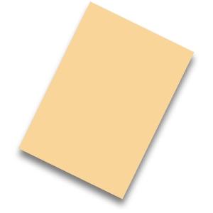 Pack de 50 cartolinas FABRISA A4 170g/m2 cor creme