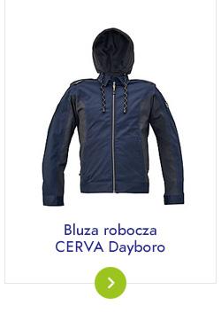bluzy Dayboro